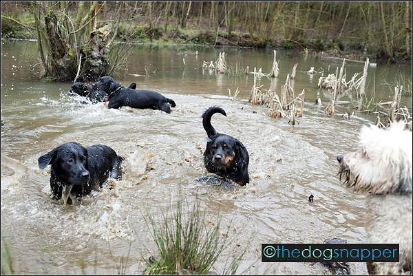 twoofers