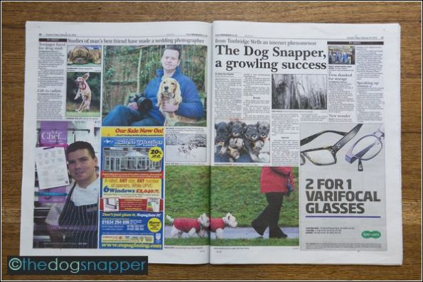 The Dog Snapper in the newspaper