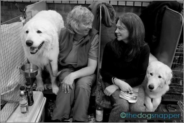 Kai (left) & Ciela, Maremma Sheepdog