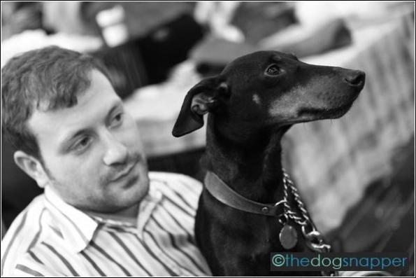 Monty, Manchester Terrier