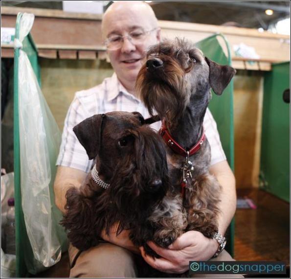 Celeste & Archie, Cesky Terriers