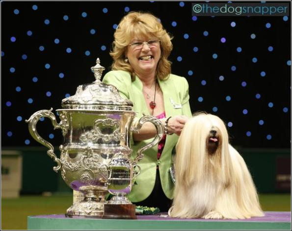 Crufts Best In Show 2012