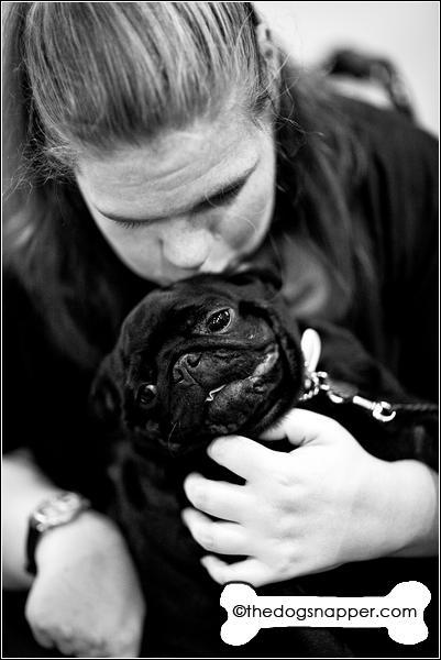 Nina, Pug